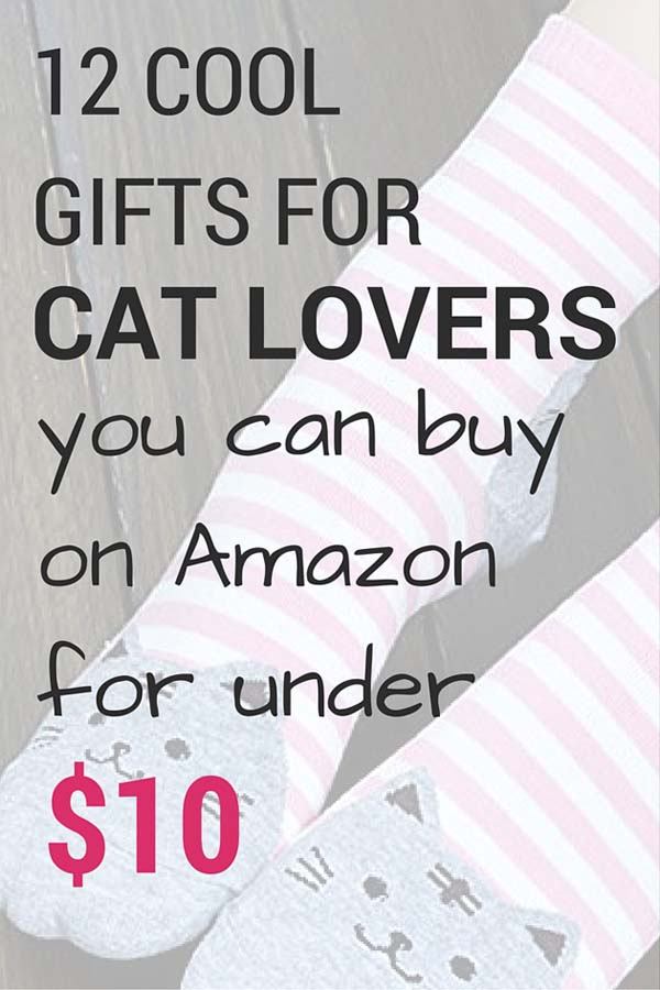 12 Cool Gifts For Cat Lovers You Can Buy On Amazon For Under